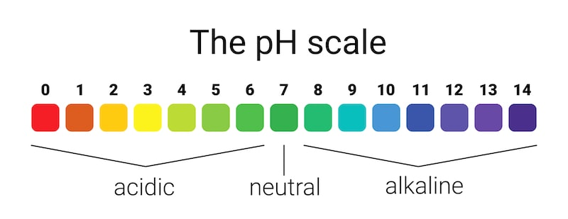 The pH Scle