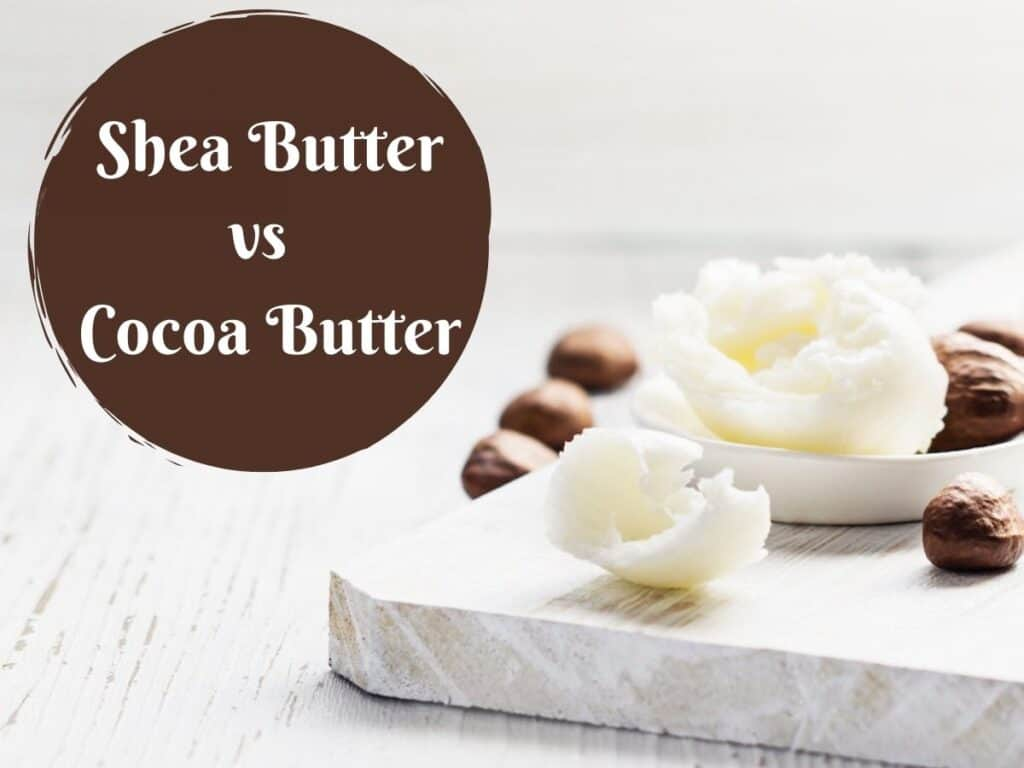 Shea Butter vs Cocoa Butter for Skin